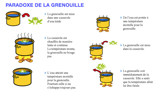 Description : VISUVIOCOOK:pour newsletter:2020-06 nl:grenouille.png