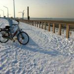 A propos de Violaine :plage néerlandaise en hiver en vélo